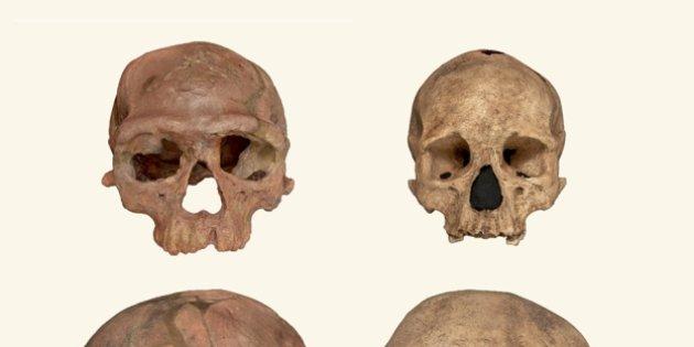 El homo sapiens es 100.000 años más viejo de lo que se pensaba