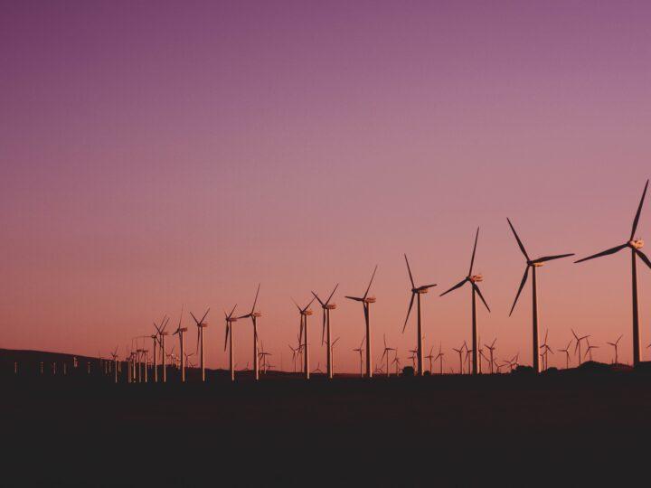 Iniciativa privada lanza plataforma para promover energía renovable.