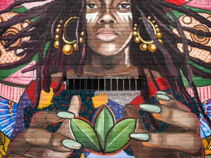 'Converse City Forests', la iniciativa que combina arte y sustentabilidad.