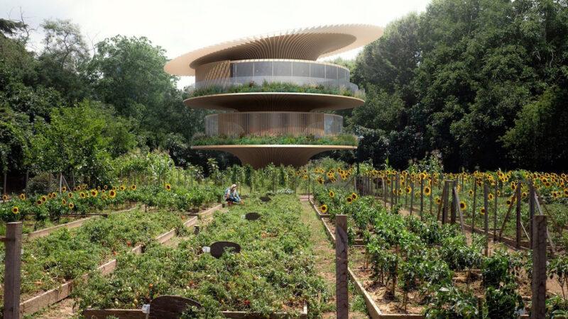 La casa que buscaba la luz: un diseño arquitectónico inspirado en los girasoles.